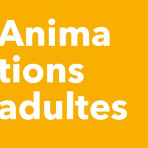 Animations adultes